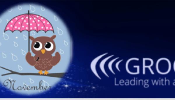 Grooa Newsletter November